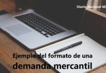 Ejemplo del formato de una demanda mercantil